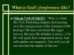 what is god s forgiveness like53