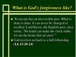 what is god s forgiveness like57