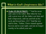 what is god s forgiveness like58