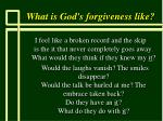 what is god s forgiveness like63