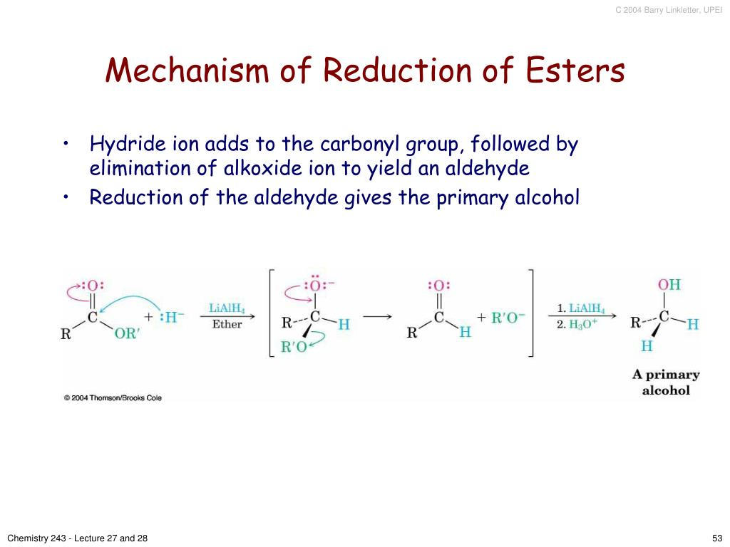 Mechanism of Reduction of Esters