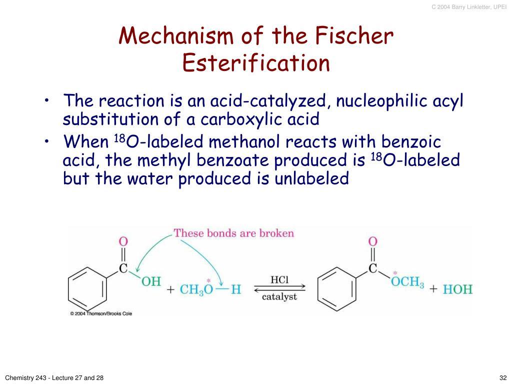 Mechanism of the Fischer Esterification