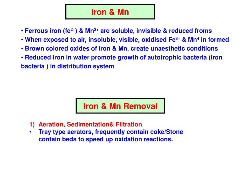 Iron & Mn