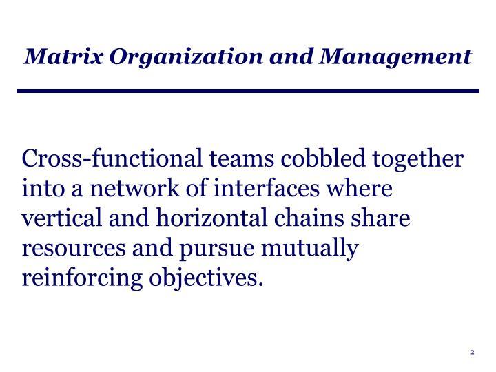 Matrix organization and management