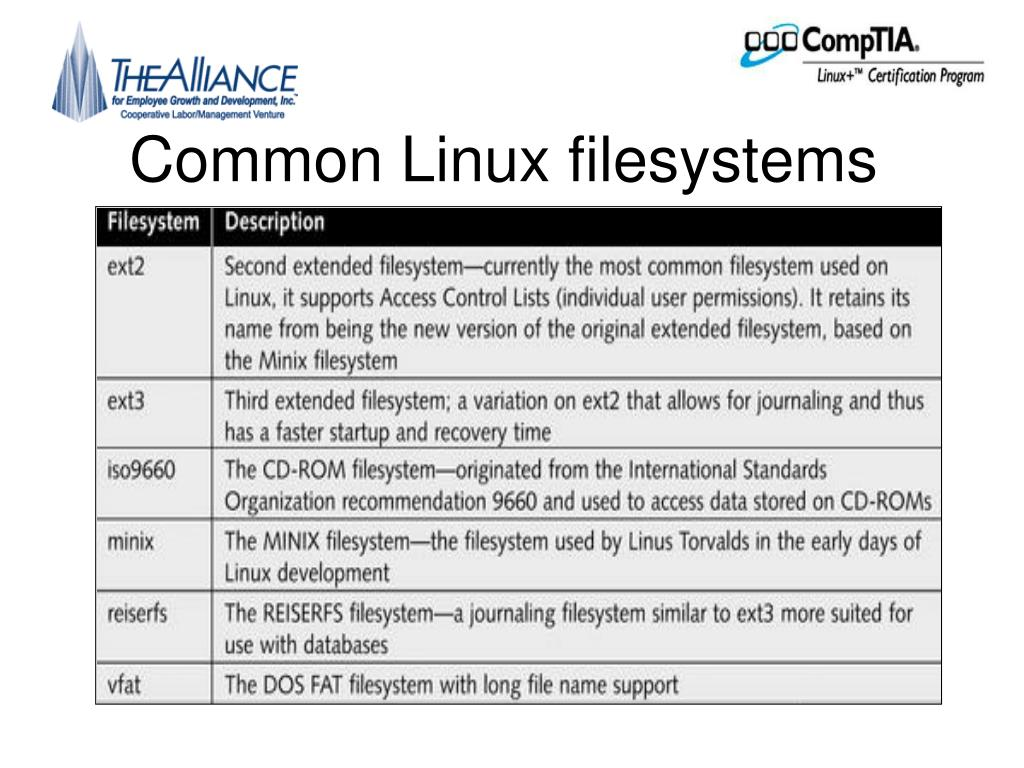 Common Linux filesystems
