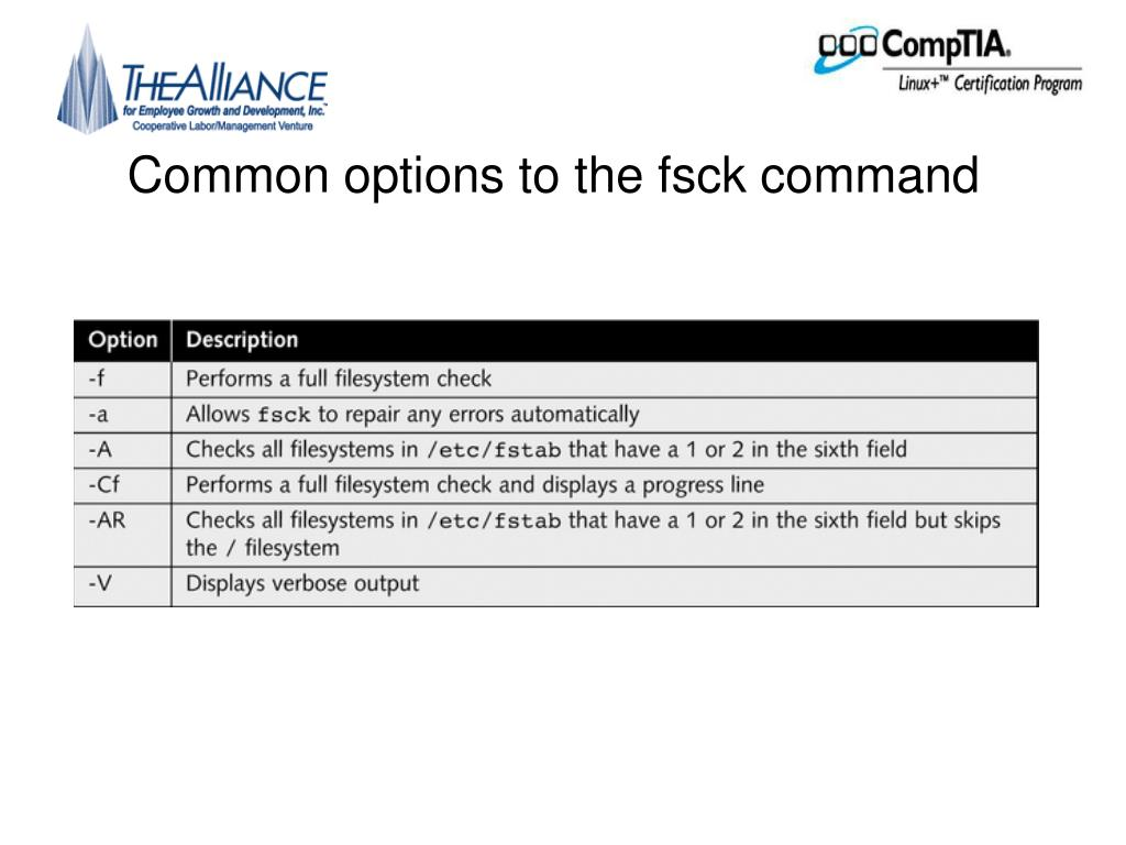 Common options to the fsck command