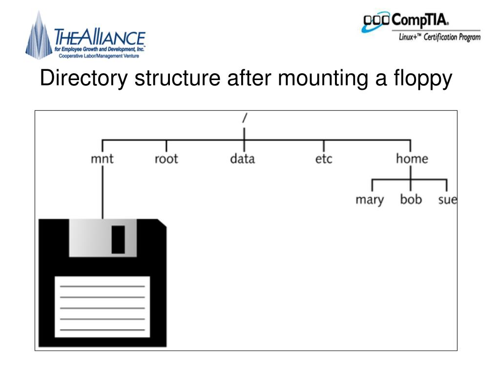 Directory structure after mounting a floppy