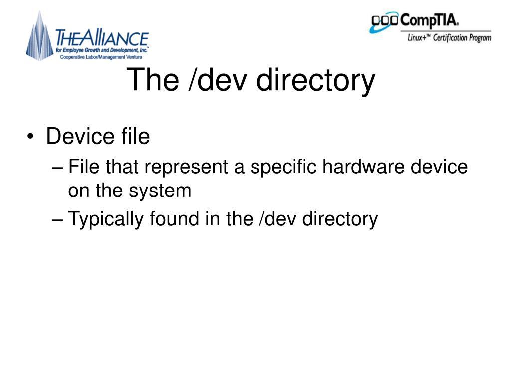The /dev directory