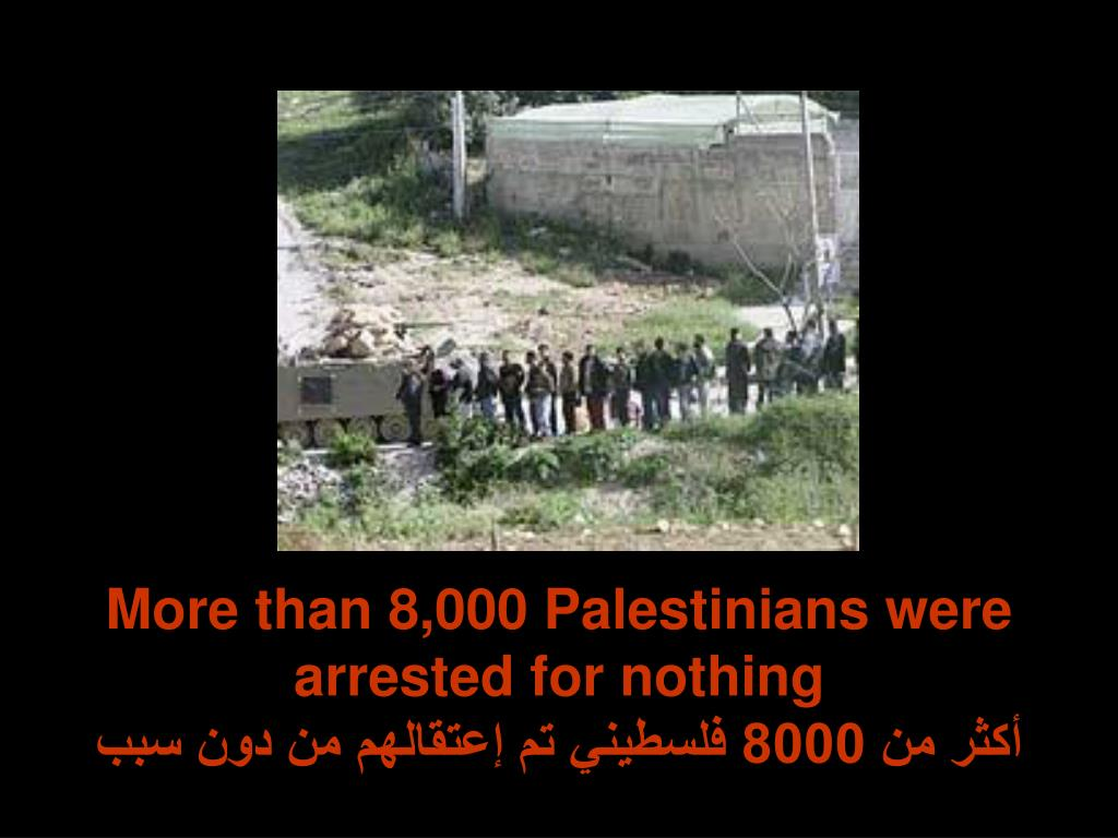 More than 8,000 Palestinians were arrested for nothing