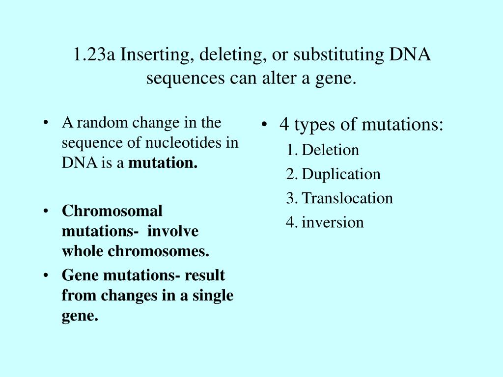 A random change in the sequence of nucleotides in DNA is a