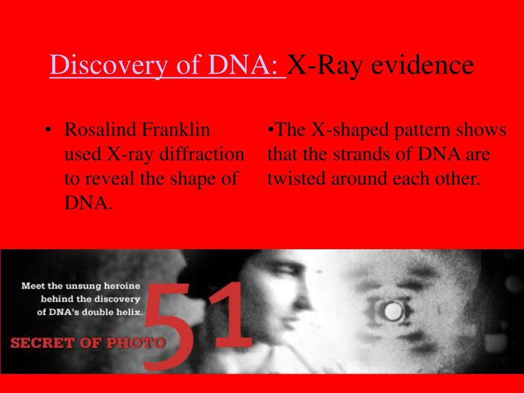 Rosalind Franklin used X-ray diffraction to reveal the shape of DNA.