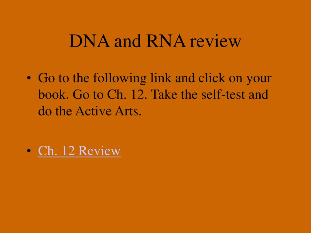 DNA and RNA review