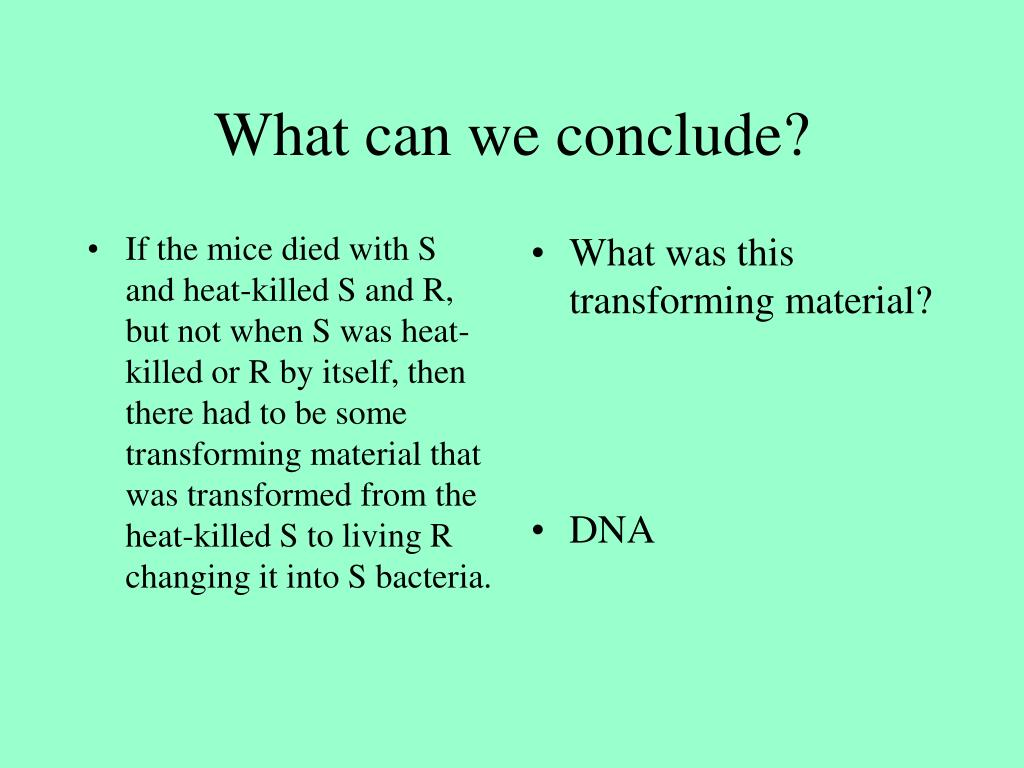 If the mice died with S and heat-killed S and R, but not when S was heat-killed or R by itself, then there had to be some transforming material that was transformed from the heat-killed S to living R changing it into S bacteria.
