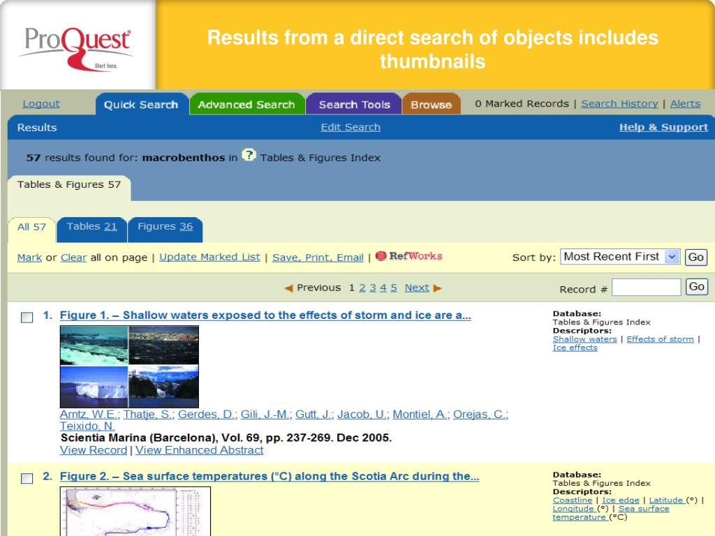 Results from a direct search of objects includes thumbnails