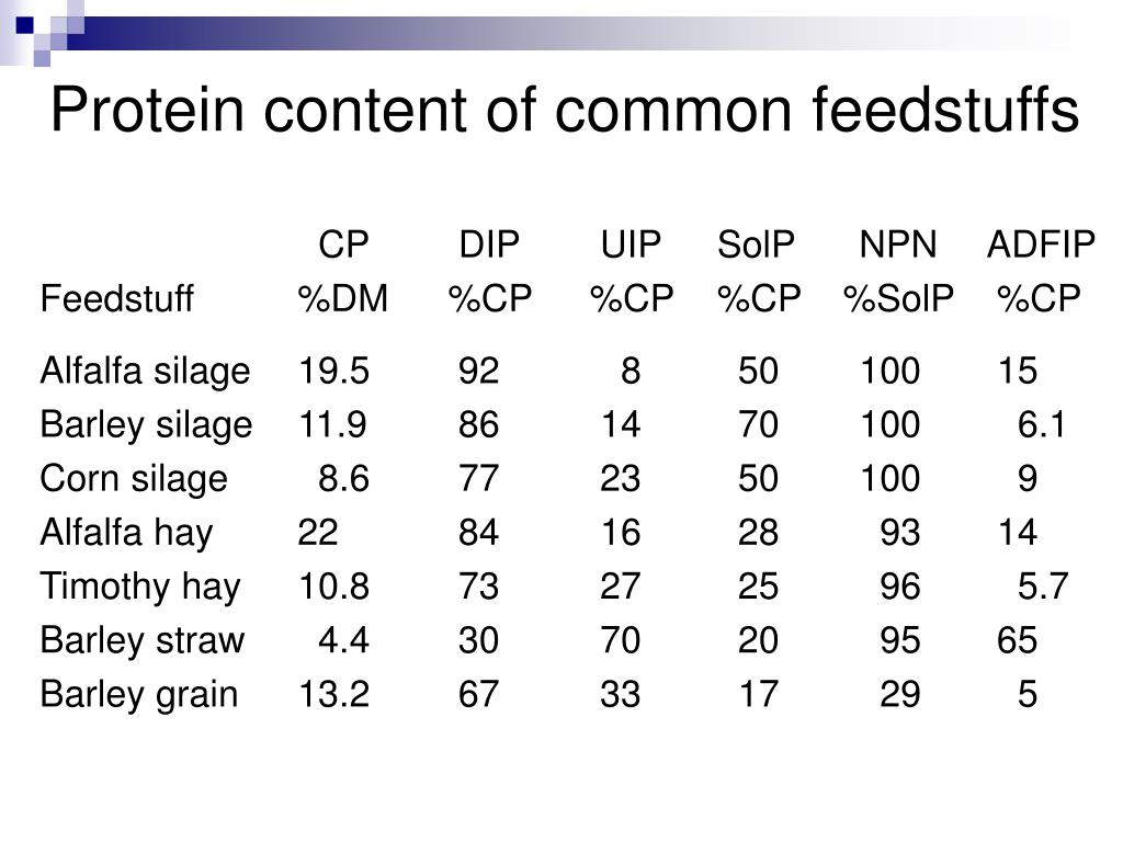 Protein content of common feedstuffs