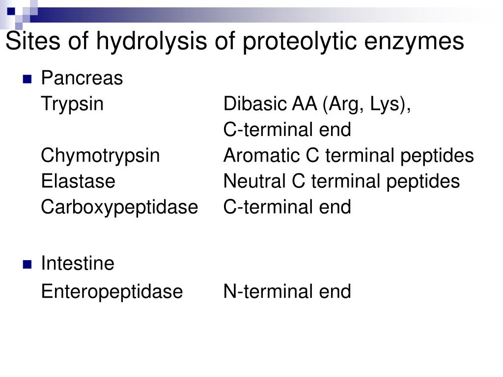 Sites of hydrolysis of proteolytic enzymes