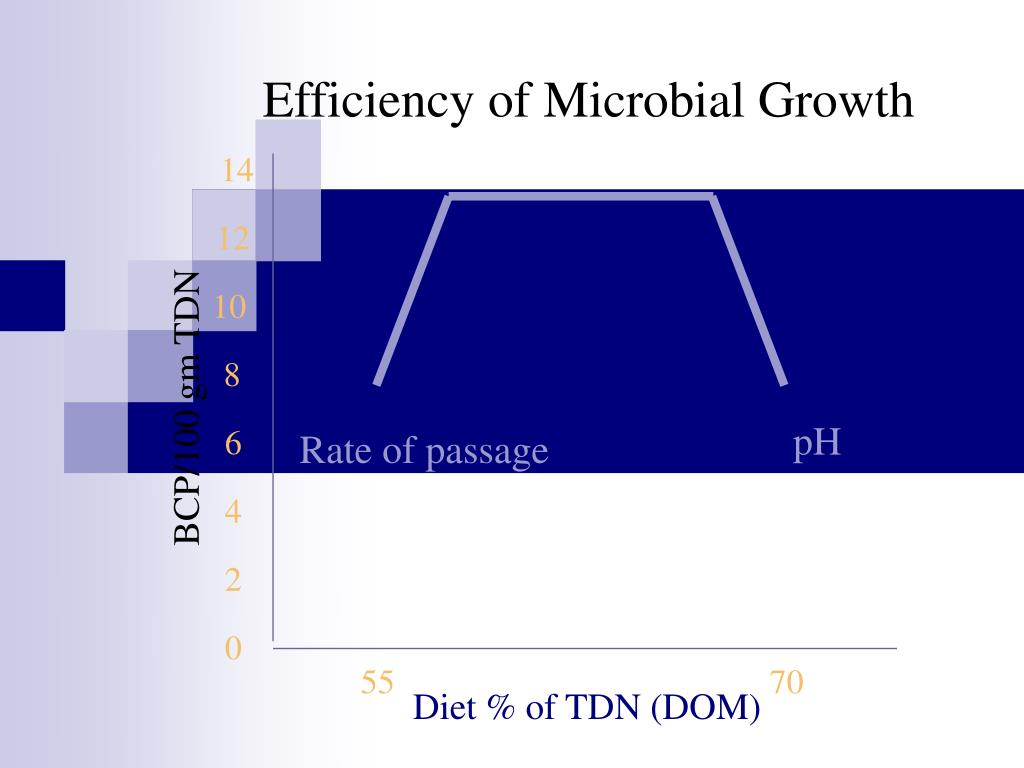 Efficiency of Microbial Growth