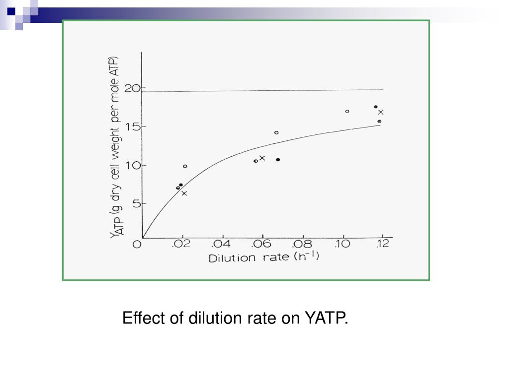 Effect of dilution rate on YATP.