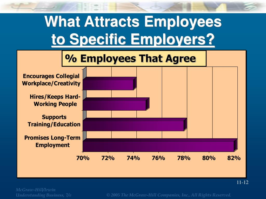 What Attracts Employees