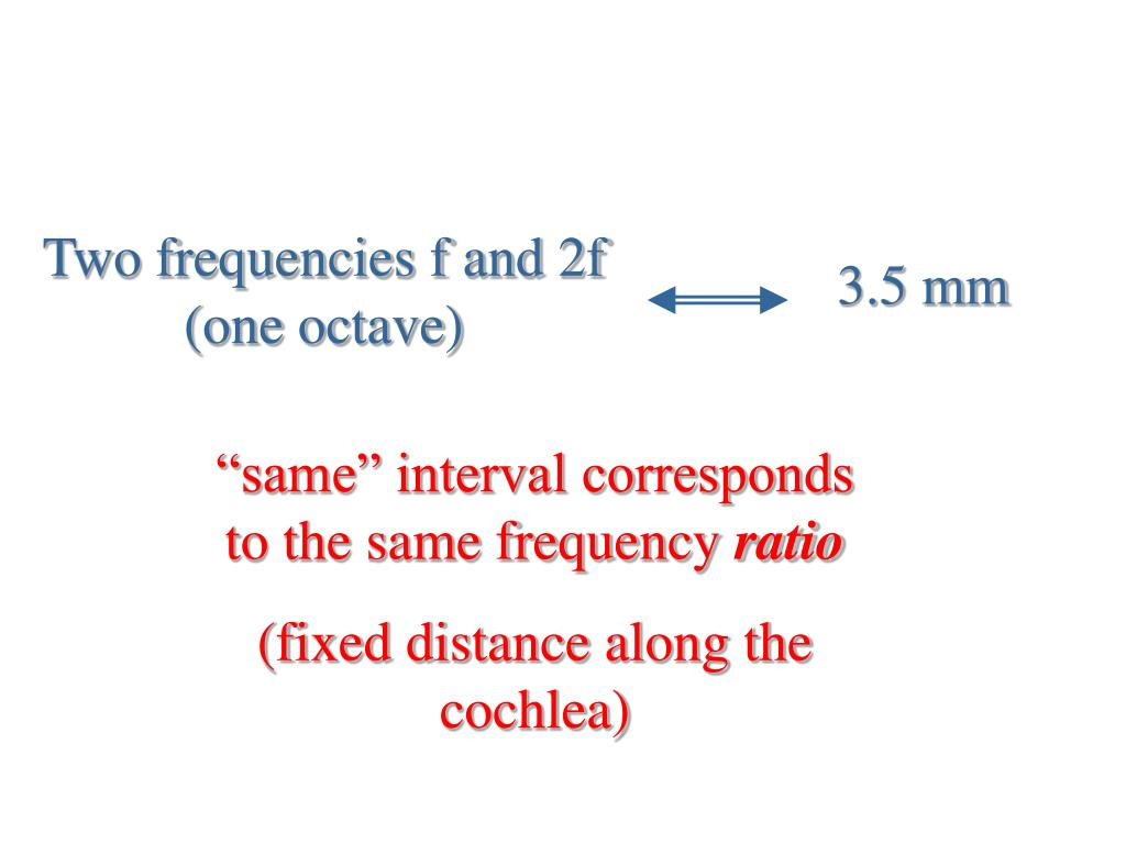Two frequencies f and 2f (one octave)