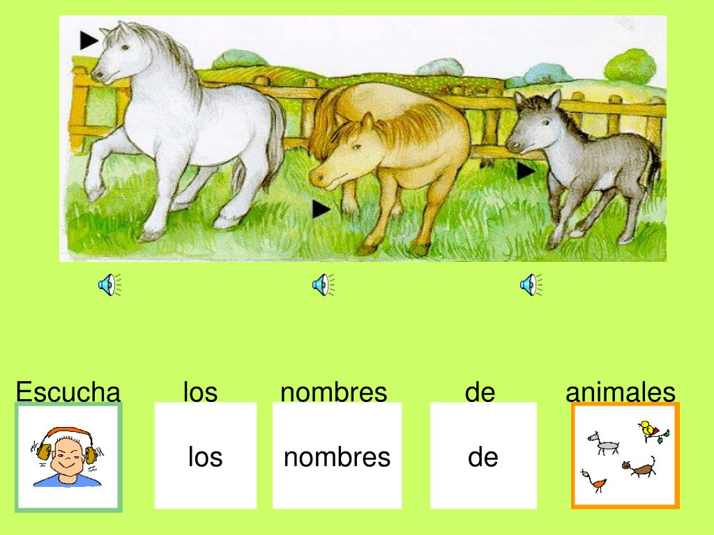 Escucha        los        nombres          de         animales