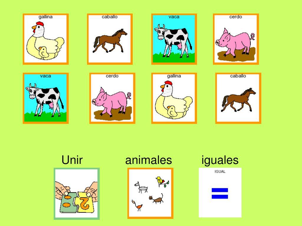 Unir             animales         iguales