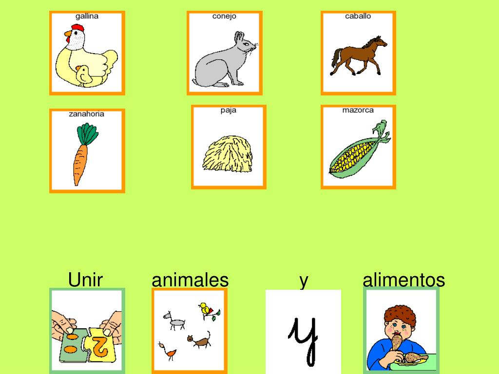Unir         animales             y          alimentos