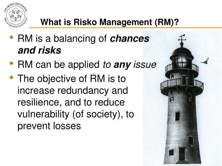 What is risko management rm