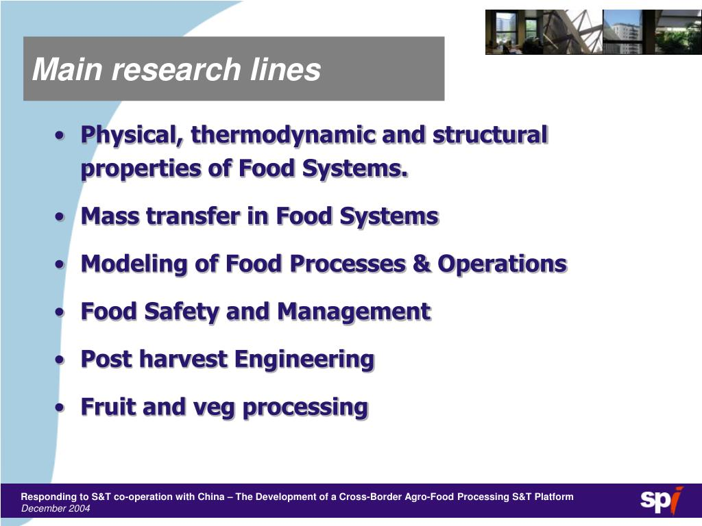 Main research lines