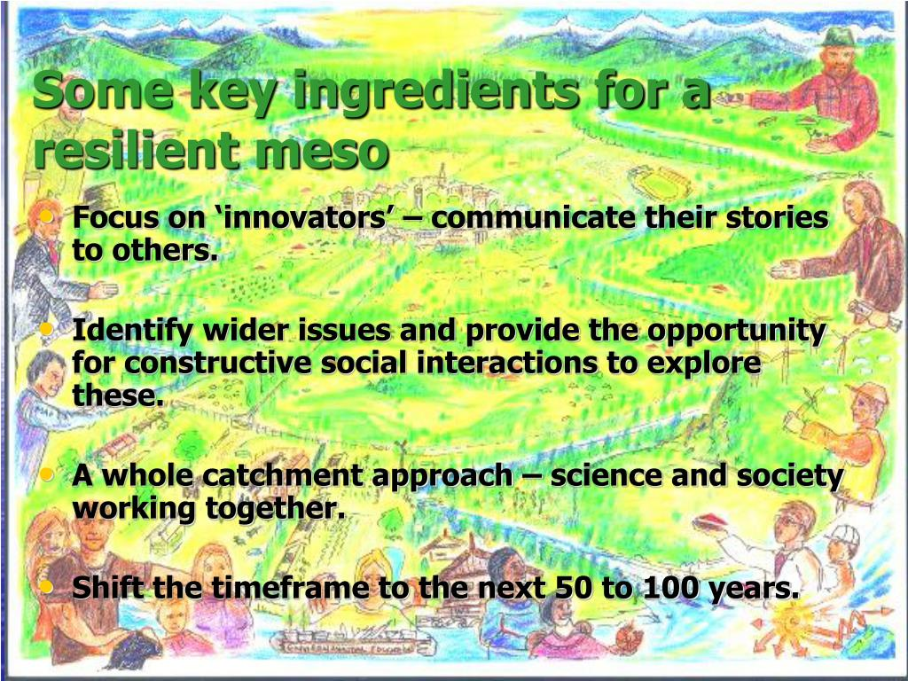 Some key ingredients for a resilient meso