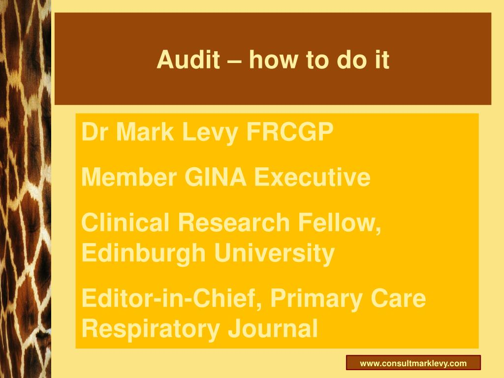 audit how to do it l.