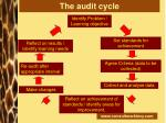 the audit cycle24