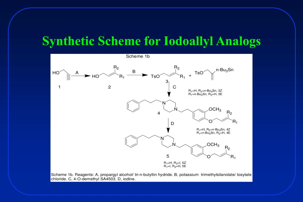 Synthetic Scheme for Iodoallyl Analogs