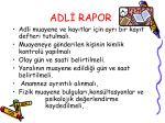 adl rapor12