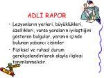 adl rapor13