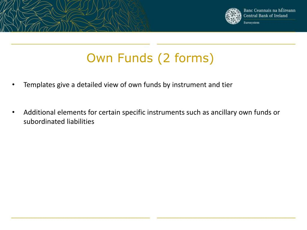 Own Funds (2 forms)
