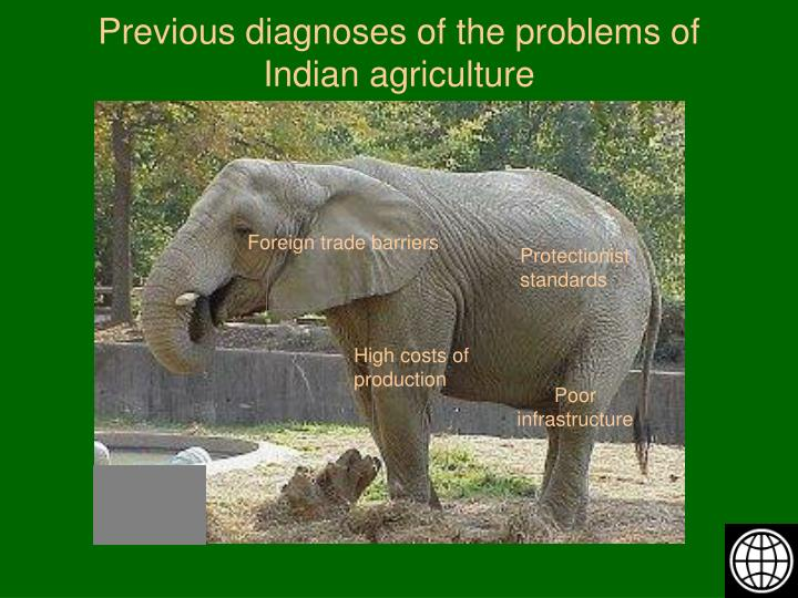 Previous diagnoses of the problems of indian agriculture