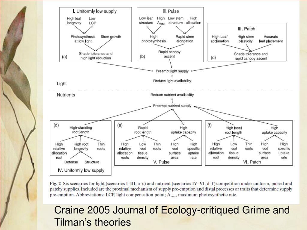 Craine 2005 Journal of Ecology-critiqued Grime and Tilman's theories