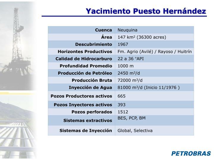 Yacimiento Puesto Hernández
