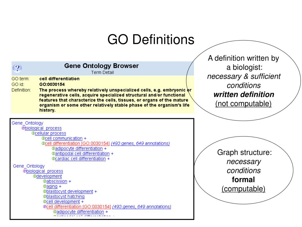 GO Definitions