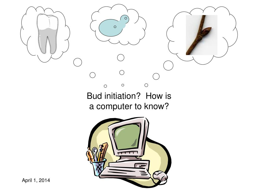 Bud initiation?  How is a computer to know?
