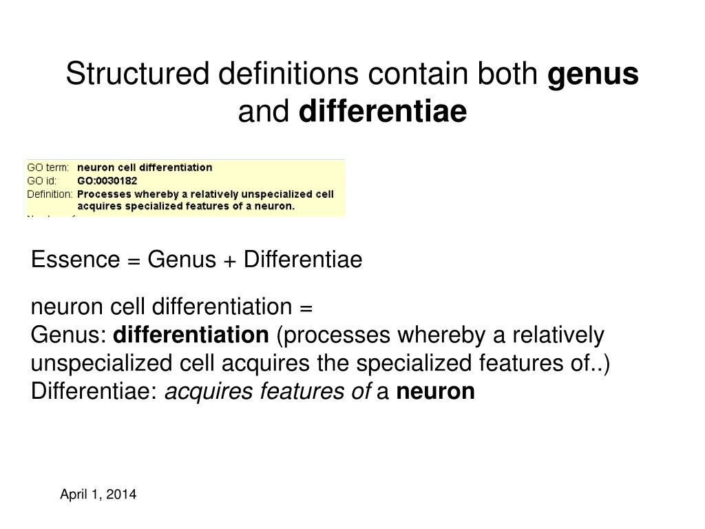 Structured definitions contain both