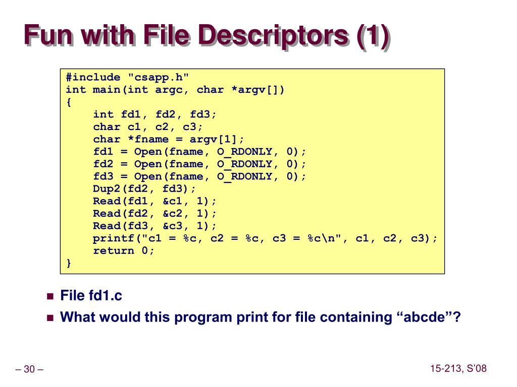 Fun with File Descriptors (1)