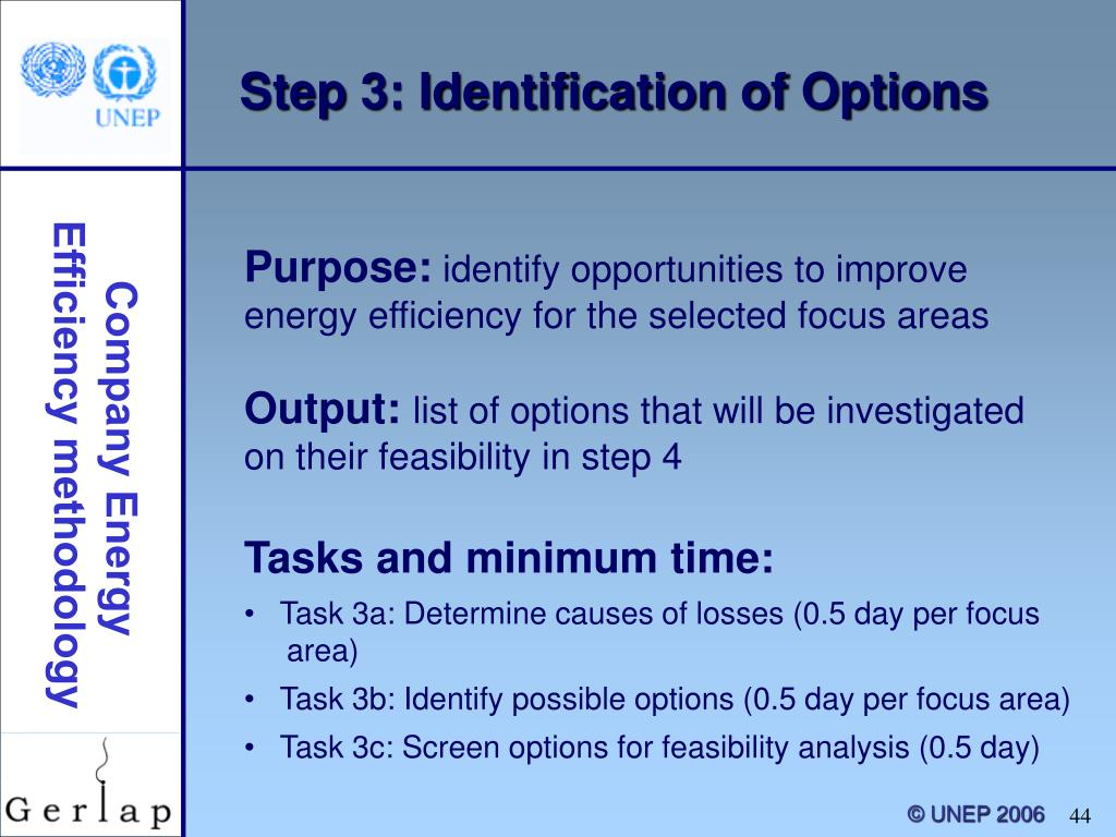 Step 3: Identification of Options