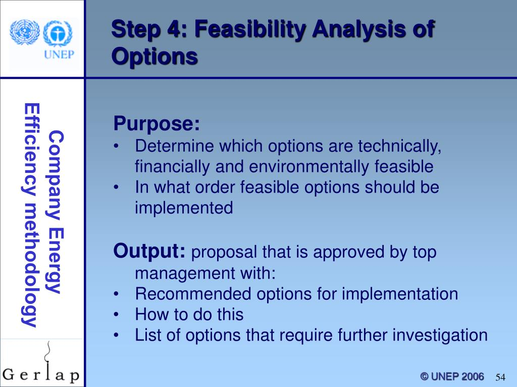 Step 4: Feasibility Analysis of Options