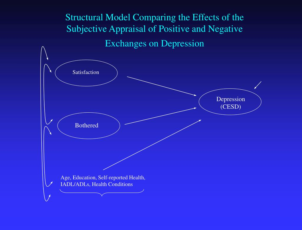 Structural Model Comparing the Effects of the Subjective Appraisal of Positive and Negative Exchanges on Depression