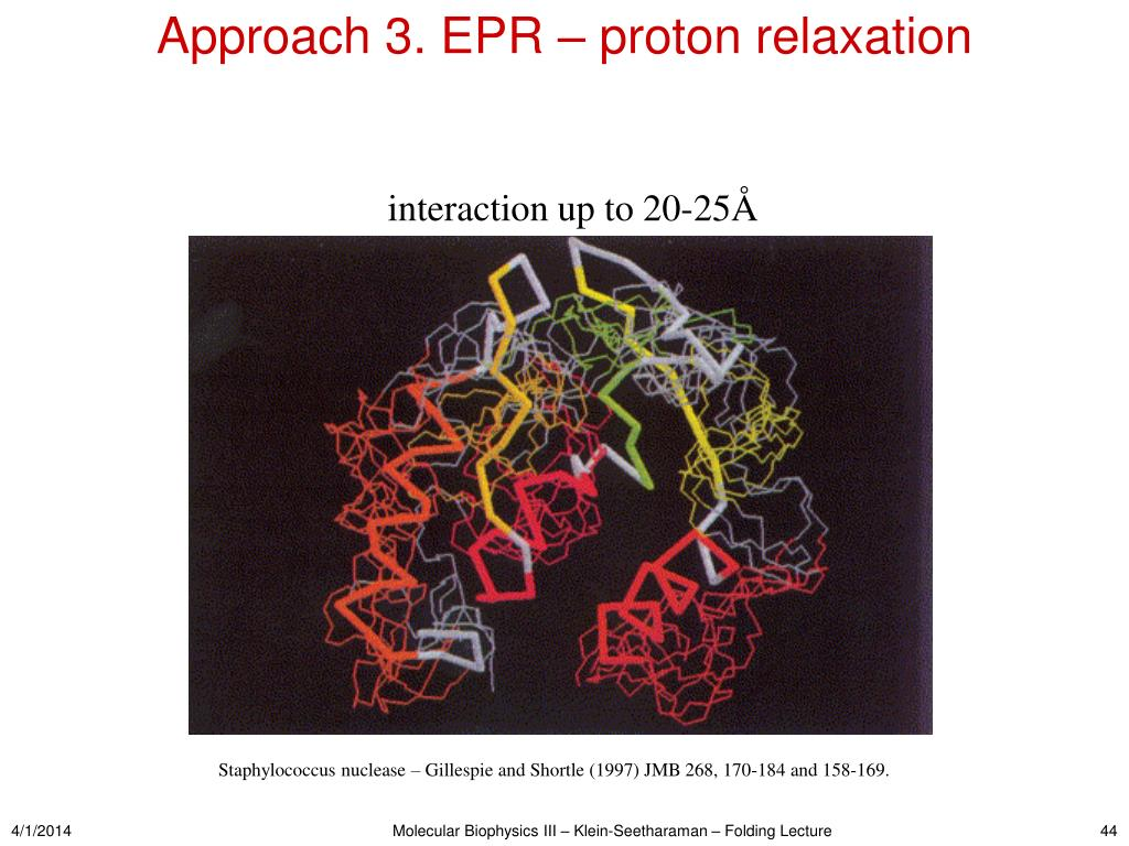 Approach 3. EPR – proton relaxation
