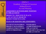 step 3 establish a strong consistent selling process account planning21