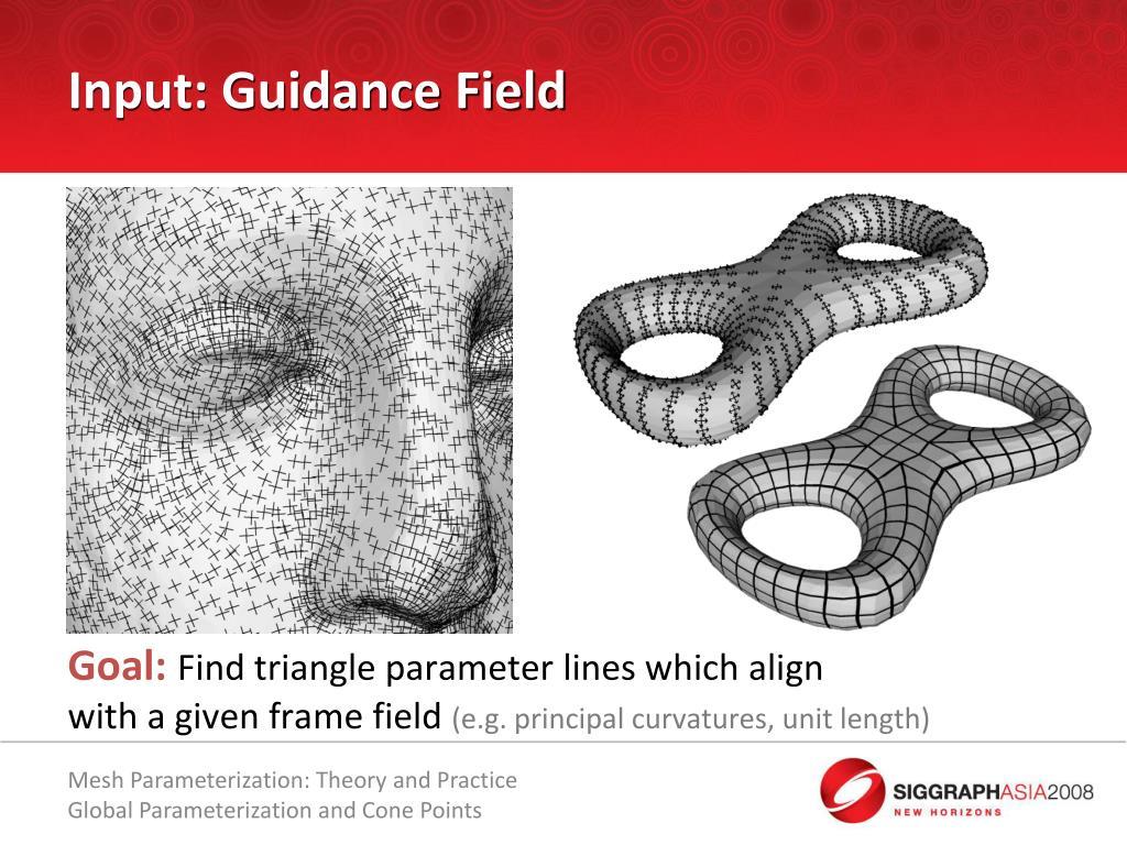 Input: Guidance Field