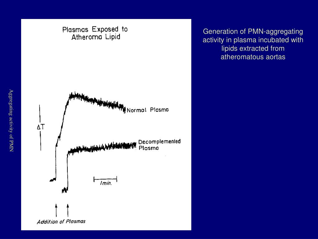 Generation of PMN-aggregating activity in plasma incubated with lipids extracted from atheromatous aortas